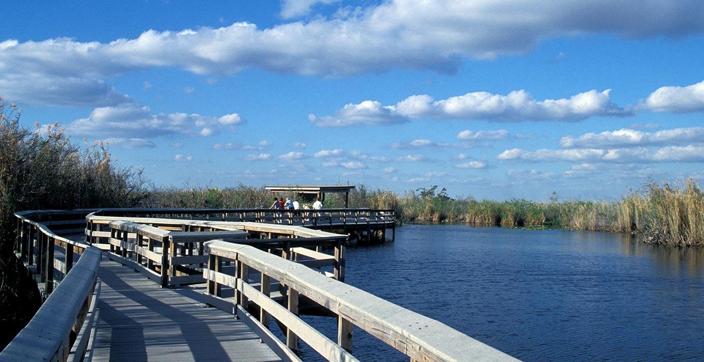 guided tours of everglades national park
